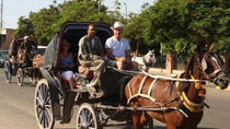 Aswan City Tour by Horse Carriage, Aswan