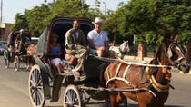 Aswan Horse and Carriage Ride, Aswan, Horse Carriage Rides