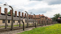 Auschwitz-Birkenau Guided Tour from Krakow with Private Transfers, Krakow, Day Trips