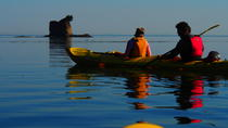 Half-Day Sea Kayaking Trip Near Olympic National Park, Port Angeles
