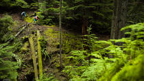 Mountain Biking near Olympic National Park, Port Angeles, Bike & Mountain Bike Tours