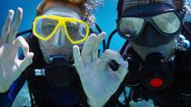 Cozumel Dive and Drive Tour with Ferry Ride from Playa del Carmen, Playa del Carmen, Snorkeling