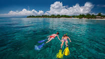 Half-Day Cozumel Snorkeling and Dune Buggy Tour with Punta Sur & Tequila Museum, Cozumel, 4WD, ATV ...