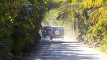 Jeep Adventure in Cozumel with Punta Sur and Beach Break, Cozumel