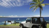 Jeep Tour in Cozumel: Punta Sur and Beach Break with Ferry Ride from Playa del Carmen, Playa del ...