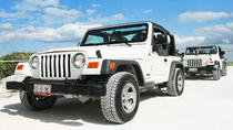 Jeep Tour in Cozumel with Snorkeling, Punta Sur and Beach Break from Cancun and Riviera Maya, ...