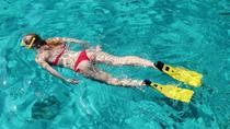 Unlimited Snorkeling and Beach Break with Lunch in Cozumel , Cozumel, Snorkeling