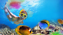 Unlimited Snorkeling and Beach Break with Lunch in Cozumel, Cozumel