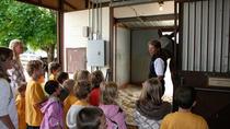 Children's Tour, Colorado, Nature & Wildlife