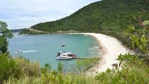 Cham Island Trip by Speed Boat including Snorkeling from Hoi An or Da Nang, Hoi An, Jet Boats & ...
