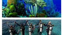 Scuba Diving Tour in Cham Island for certified divers or Beginners, Hoi An, Scuba Diving