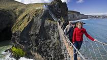 Shore Excursion: Giants Causeway Tour From Belfast Port