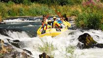 Half-Day Rogue River Rafting, Ashland, White Water Rafting