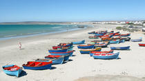 Cape West Coast Private Day Tour, Cape Town, null