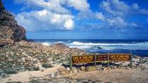 Full-Day Cape Peninsula Sightseeing Tour från Cape Town, Kapstaden, Dagsturer