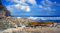 Full-Day Cape Peninsula Sightseeing Tour from Cape Town, Cape Town, Day Trips