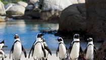 Private Tour: Cape of Good Hope and Cape Point from Cape Town, Cape Town