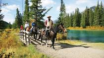 1 Hour Banff Horseback Riding Adventures, Banff, Day Trips