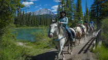 1 Hour Banff Horseback Riding Adventures, Banff, Horseback Riding