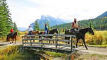 2 Hour Banff Horseback Riding Adventure, Banff, Horseback Riding