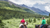 3-Day Stoney Creek Backcountry Tent Trip by Horseback, Banff, Horseback Riding