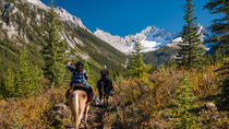 3-Day Sundance Explorer Backcountry Lodge By Horseback, Banff, Multi-day Tours