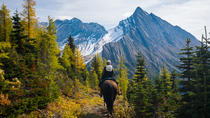 4-Day Erling Strom Trail Backcountry Lodge Trip by Horseback, Banff, Horseback Riding