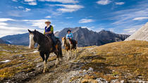 6-Day Halfway Lodge Backcountry Trip by Horseback, Banff, Horseback Riding