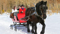 Private Horse-Drawn Sleigh Ride In Banff, Banff