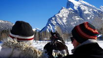 Private Horse-Drawn Sleigh Ride In Banff, Banff, Private Sightseeing Tours