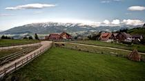 Local experience around Brasov, Brasov, Cultural Tours