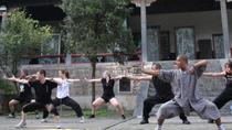 7-Day Shaolin Kung Fu Training Camp from Beijing, Beijing, Multi-day Tours