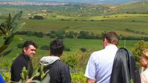 Food and Wine Tour to Sardinian Winery, Cagliari