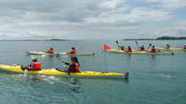 Auckland Rangitoto Island Guided Sunset Kayaking Tour, Auckland, Day Cruises
