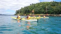 Halve dag Auckland North Head Guided Kayaking Tour, Auckland, Kayaking & Canoeing