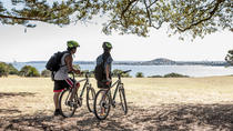 Auckland Waterfront Guided Bike Tour, Auckland, Bike & Mountain Bike Tours