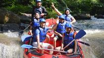 Bali Rafting and Ubud Tour, Ubud, 4WD, ATV & Off-Road Tours
