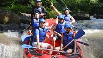 Bali Rafting en Ubud Tour, Ubud, 4WD, ATV & Off-Road Tours