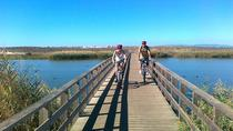 Albufeira Coast and Countryside Mountain Bike Tour, アルブフェイラ