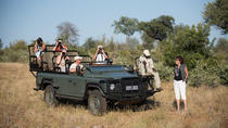 9-Day Privately Guided Best of Kruger Park Safari, Kruger National Park, Multi-day Tours