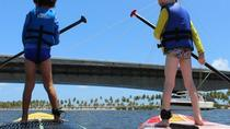Stand up Paddle in Jaboatão River from Recife, Recife