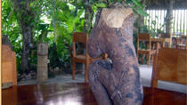 Eco-Village Tours from Belize City, Belize City, Eco Tours