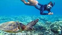 Oahu Grand Circle Tour with Snorkeling from Waikiki via Bus, Oahu, Helicopter Tours