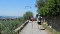 Florentine Hills Half-Day Walking Tour and Wine Tasting, Florence, Half-day Tours