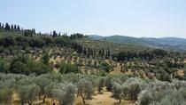 Hills of Florence Walking Tour with Morning Picnic, Florence, Hiking & Camping