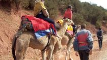 Private High Atlas Mountains Day Trip from Marrakech with Camel Ride, Marrakech, Private ...