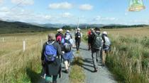 11-Day Ring of Kerry Self-Guided Hike, キラーニー