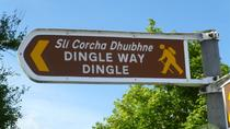 8-Day Dingle Peninsula Guided Walk