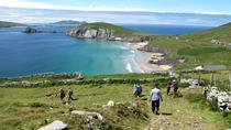 Dingle Peninsula Hike - 5 Day Self-Guided Tour, Dingle, Hiking & Camping