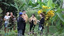 Costa Rica Descens Organic Farm, La Fortuna, 4WD, ATV & Off-Road Tours